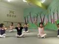 君艺教育舞蹈课程展示 (75播放)